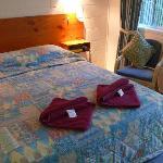 Maleny Hills Motel