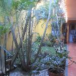 Inside Hotel - Tiny but pretty garden