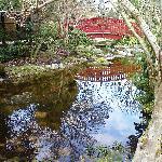 Le jardin japonais de Rueil