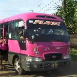 The local bus is also a great way to get around, and meet the locals