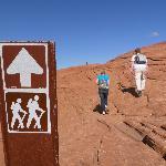 Petrified Sand Dunes Trail