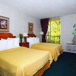 Quality Inn & Suites Livonia