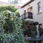 Spring at Bohemian House