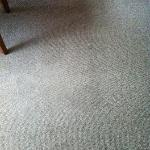 Nice clean carpet