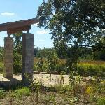 Ed's Oasis on Bluebird Trail