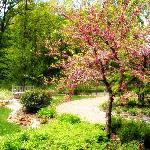Springtime at Taltree