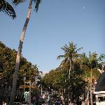 Naples 5th Avenue