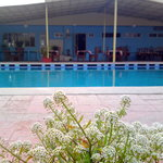Ravia Poolside and Rooftop restaurant