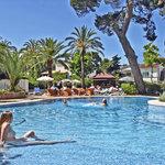 Hotel HSM Venus Playa Foto