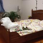 double bedroom1