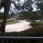 Garden View Guestroom - View