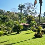 Foto de Argovia Finca Resort, Ruta del cafe