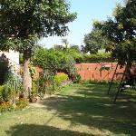Fresh air in Delhi! The front garden.