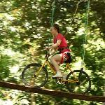 tree top biking!