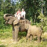 Elephant Trek in the jungles of Chiang Mai