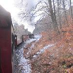 Narrow gauge steam railway