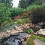 Foto de Linnaeus Teaching Gardens
