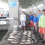 Bay fishing trips
