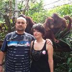 Breakfast with monkeys