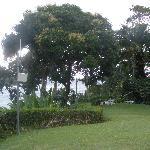 Goblin Hill - wll-kept grounds