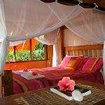 Exotic Bed Canopy in Master Bedroom