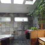 Open area shower, nice for ADA needs