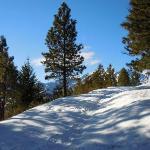 Snowshoeing up on the ridge