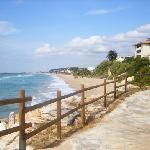Playa El Francàs