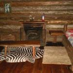 Second cabin fireplace