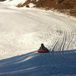 woohoo sledding