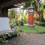 Cherukara Nest back yard, pigon coup