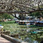 Alleppey canals