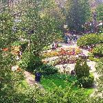 springtime over rock gardens