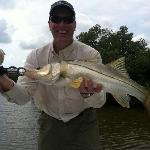 "28"" Snook"