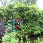 Bridge over pond waters