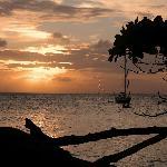 Cayo Levantado Sunset