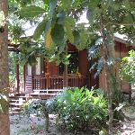 An A/C Andaman Cottage