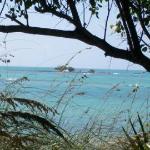 The mini island on the secluded beach...