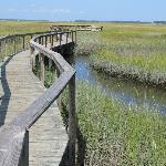 Amelia Island scenery