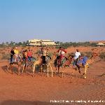 Camel Riding 1