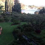 Giardino splendido con pappagalli bellissimi