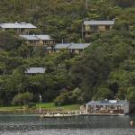 Punga Cove Resort from Queen Charlotte Track