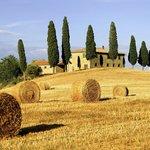 Tuscan Rolling Hills