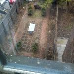 Garden in Back