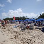beach rendezvous excursion