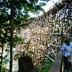 nearby heritage attraction the Kinsol Trestle