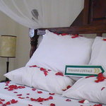 Bed at Tumaini Cottage Arusha