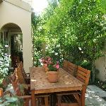 Side garden view outdoors