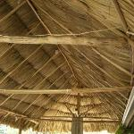 Jungle Huts Resort의 사진