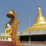 Budhha Statue with Pagoda inbackdrop